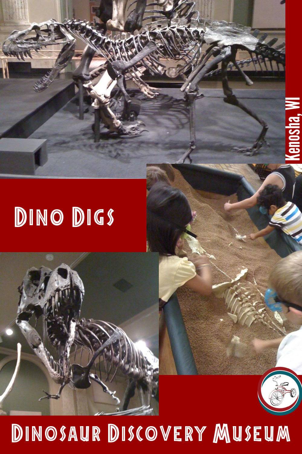 Dino Digs at The Dinosaur Discovery Museum
