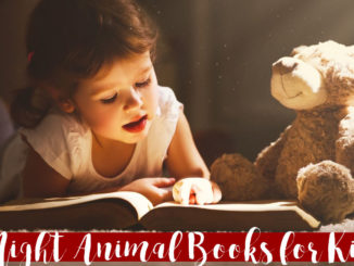 books about nocturnal animals