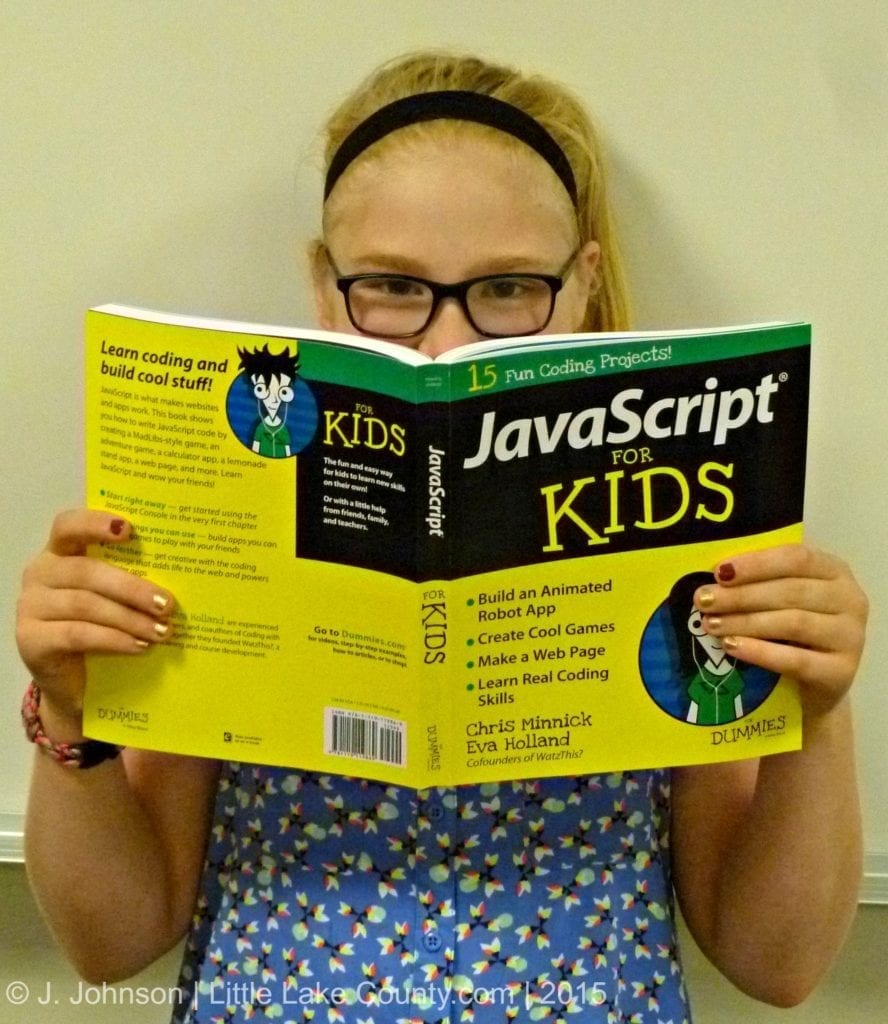 Book Review Javascript For Kids For Dummies Little Lake