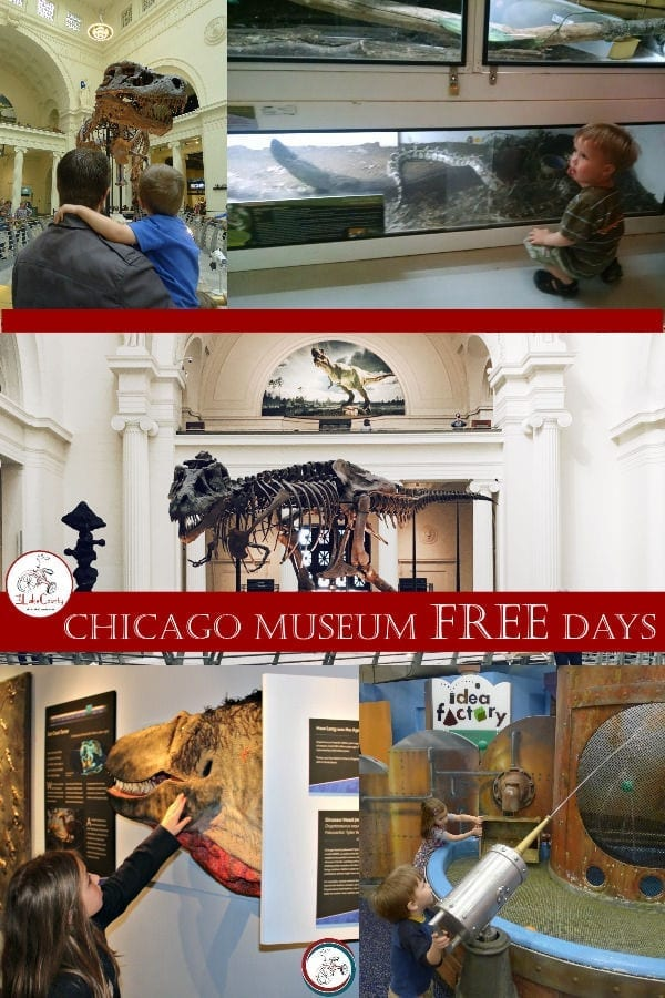 Chicago Museum Winter FREE Days