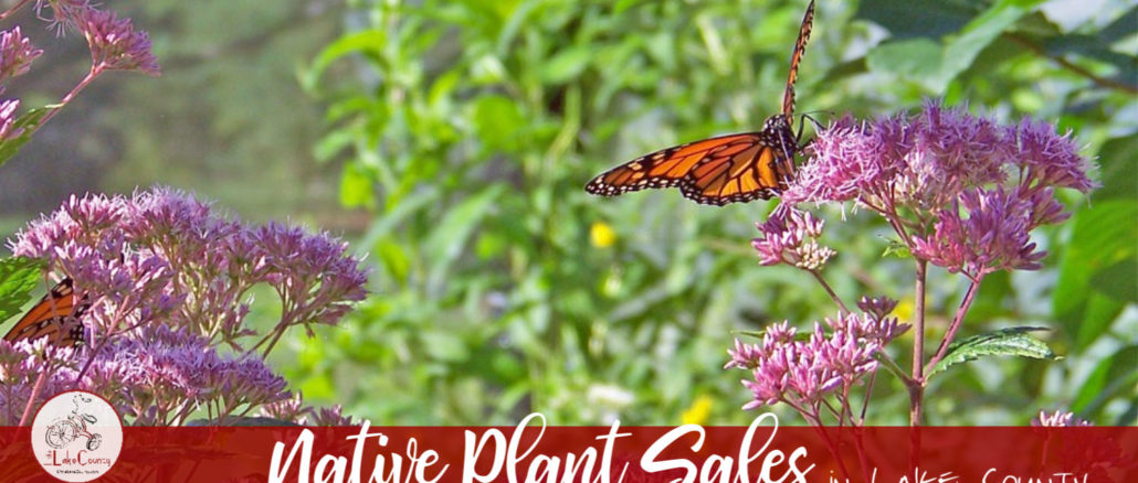 native plant sales in lake county
