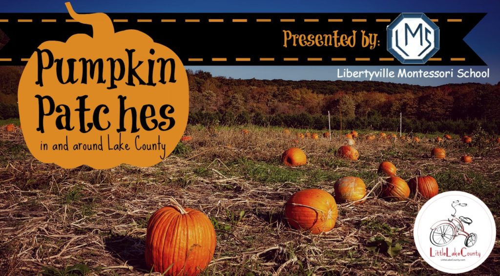 pumpkin patches in lake county