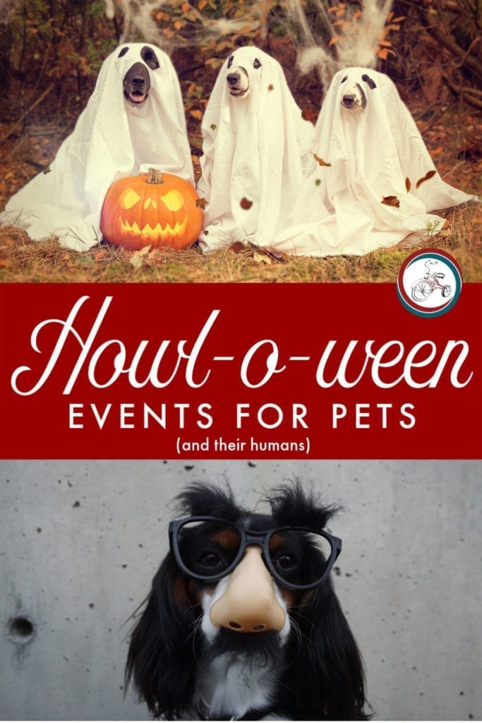 Howl-O-ween! Events for Pets and their Humans