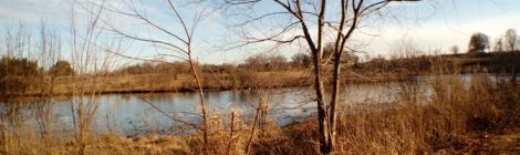 Nippersink Forest Preserve Round Lake