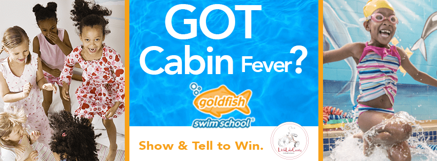 Goldfish Cabin Fever Contest