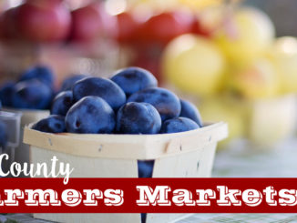lake county farmers markets
