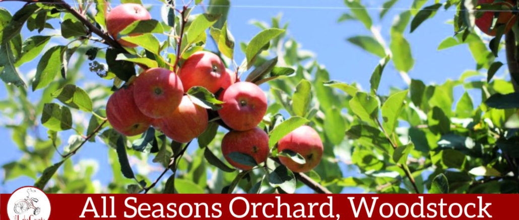 all seasons orchard woodstock