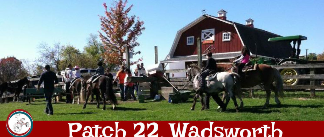 patch 22 farm wadsworth